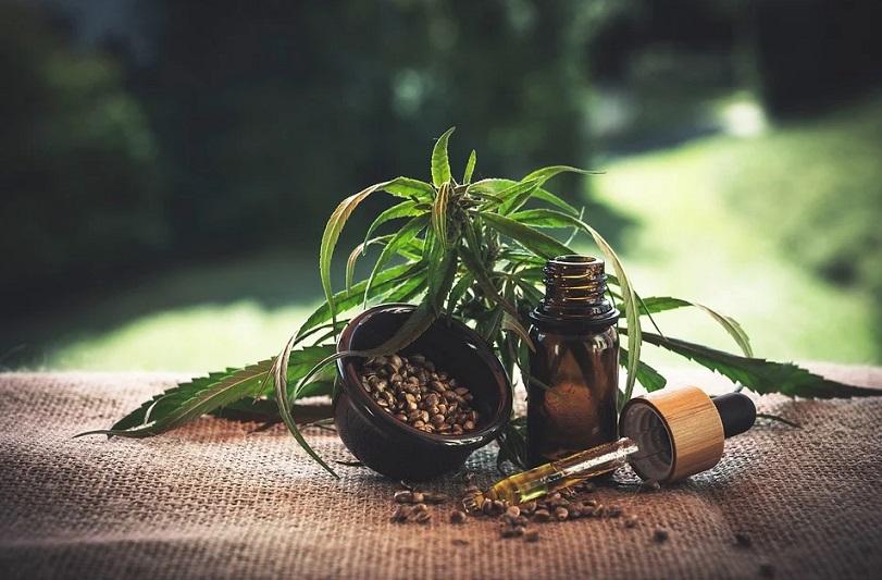 flacon d'huile et graines de cannabis