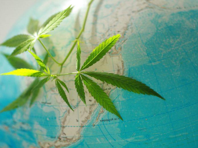 cannabis monde légalisation